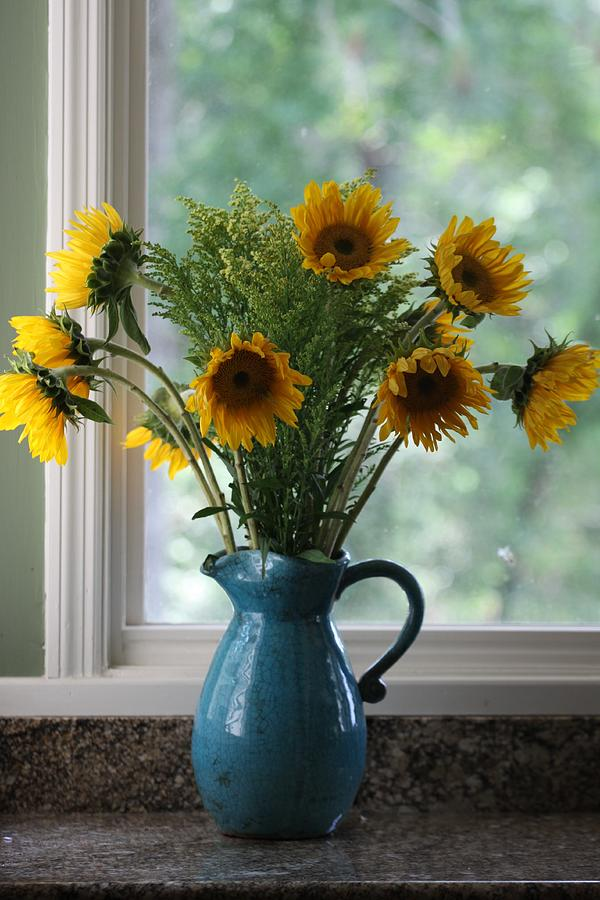 sunflower-window-paula-rountree-bischoff